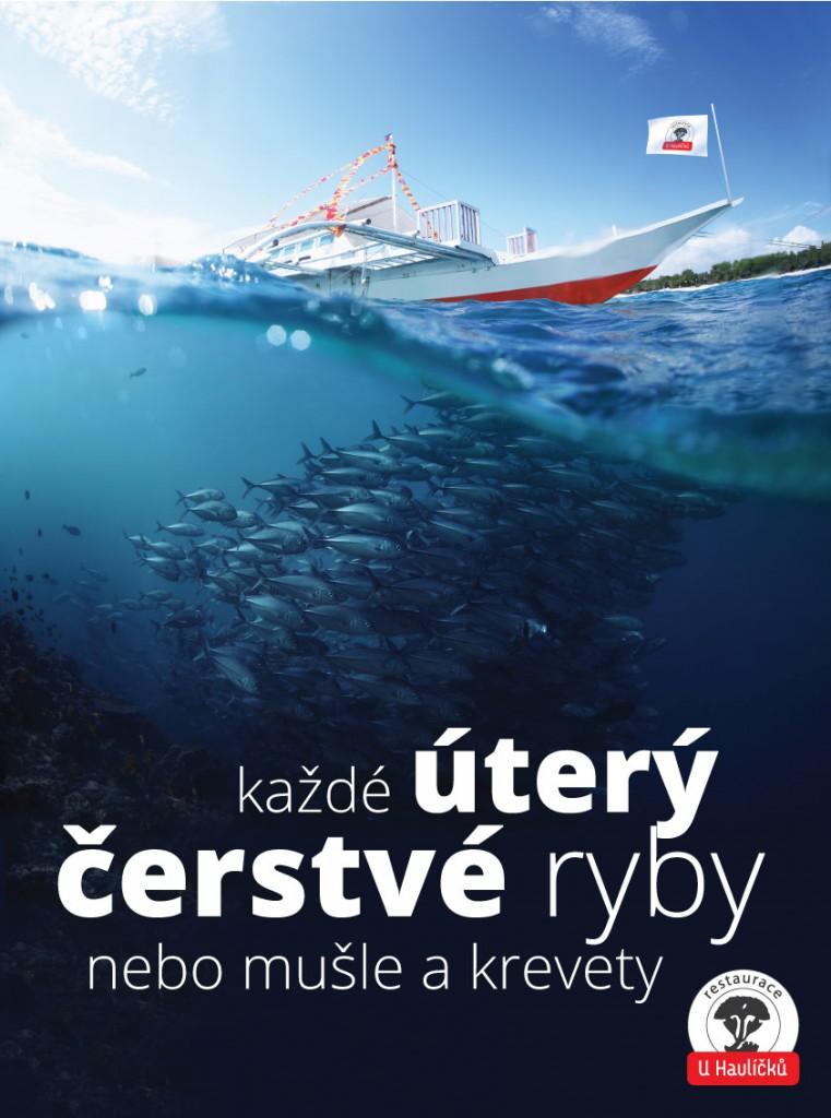 Plakát ryby